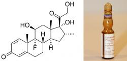 Dexametazon (DMX). Syntetický steroidní hormon (kortikosteroid) odvozený od přirozených hormonů vytvářených v kůře nadledvin. Z leukosomů udělá zvláště účinného pomocníka umravňujícího zánět, který se vymkl kontrole a škodí.