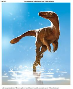 Rekonstrukce vzezření velkého troodontida druhu Latenivenatrix mcmasterae. Šlo zřejmě o rychlého a vytrvalého lovce menších a středně velkých obratlovců, včetně mláďat některých větších dinosaurů. Kredit: Julius Csotonyi