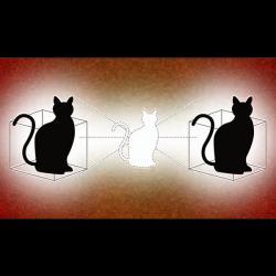 Schrödingerova elektromagnetická kočka z koherentních mikrovlnných fotonů. Kvantová kočka se vyskytuje ve dvou krabicích současně. Podobně tomu je i s předpovězenými mentiony. Kredit: Michael S. Helfenbein / Yale University.