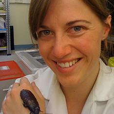 Sophie Mowles (vpravo) spolu Byrsotria fumigata. Kredit: Anglia Ruskin University v Cambridge a Chelmsford.
