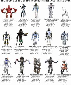 Roboti ve finále soutěže DARPA Robotic Challenge. Kredit: DARPA.