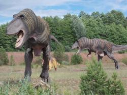 Modelydvou dospělých tyranosaurů a triceratopsev areálu JuraParku Krasiejów. Na hlavách jim často posedávají jejich opeření evoluční potomci. V pozadí výchoz svrchnotriasových sedimentů, pocházejících z doby, která těmto dinosaurům předcházela asi o 160 milionů let. Kredit: Autor článku.