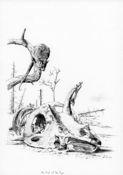 Děsivé podmínky po dopadu planetky mohli přežít pouze menší tvorové, kteří se na nezbytně dlouhou dobu dokázali ukrýt do podzemních nor nebo pod vodní hladinu. Dosavadní malí a slabí zástupci fauny, pobíhající pod nohama obřích dinosaurů, se tak vmžiku stali pomyslnými evolučními vítězi. Pevniny měly nadále patřit zejména savcům a v menší míře ijediným přeživším dinosaurům – ptákům.Kredit:Vladimír Rimbala, ilustrace pro autorovu knihuDinosauři od Pekelného potoka(nakl. Motto, 2010).