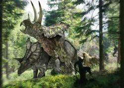 V případě kopulace rohatých dinosaurů ceratopsidů ještě nečiní představa o průběhu aktu velké potíže – v tomto případě bylo jen potřeba dávat pozor na lebeční excesivní struktury, tedy výrazné rohy vyčnívající z okrajů límce a hlavy. Zde párek obřích ceratopsidů rodu Pentaceratops. Kredit: Jose Antonio Penas/Science Photo Library