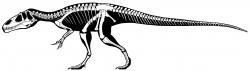 """Moderní rekonstrukce kostry megalosauridního teropoda druhuEustreptospondylus oxoniensis, žijícího na území západní Evropy v období střední až pozdní jury (asi před 163 až 154 miliony let). Tento středně velký teropod o délce kolem 6 metrů a půltunové hmotnosti mohl být velmi podobnýpříbuznému """"moravskému"""" teropodovi od Brna.Kredit:Jaime A. Headden; Wikipedie (CC BY-SA 3.0)"""