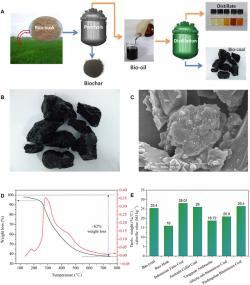 Výroba bio uhlí. Kredit: Cheng et al. (2020), Science Advances.