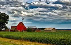 Americká farma, kde se na fazole již orientují.