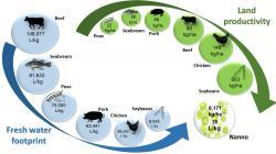 Produkce esenciálních aminokyselin z pohledu potřeby sladké vody a roční produktivity a záboru půdy. (Kredit:  Průmyslová biotechnologie, CC BY-ND)