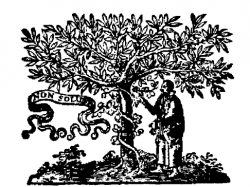 Detail titulního listu Galileiho díla Matematické rozpravy…  Narážka na trhání plodů ze stromu poznání je zjevná. Kredit: Mahahahaneapneap, Wikimedia Commons