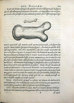 Ilustrace kosti jako příkladu problémů s pevností. Matematické rozpravy… Kredit: University of Oklahoma Libraries via Wikimedia Commons.