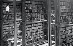 Zorientovat se v knihovně se čtyřmi tisícovkami svazků není jen tak.