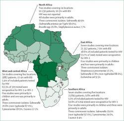 Mapka rozšíření salmonelových infekcí sestavená podle výsledků vyšetření  krevních vzorků nemocných u nichž se vyskytla  horečka.  Salmonelózy označované jako NTS, jsou rozšířené především v  subsaharské Africe. (Kredit: Nicholas A Feasey, Lancet)