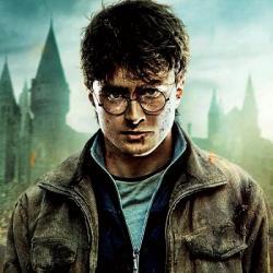 Harry Potter to nakonec zvládl. Kredit: Warner Bross Pictures.