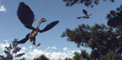 Archaeopteryx. Kredit: Shutterstock