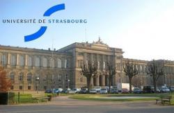 Štrasburk není jen universitním městem s laboratořemi s vysokou koncentrací pellagrických křečků, je i sídlem Rady Evropy,Evropského parlamentu aEvropského soudu pro lidská práva. (Kredit: Université de Strasbourg)