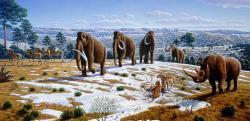 """Pleistocénní megafauna, mezi jejíž nejznámější protagonisty patří mamut srstnatý a jeho """"průvodce"""" nosorožec srstnatý, byla vnímavým Evropanům známá již ve středověku a raném novověku. Ještě však netušili, že se nejedná o kosti (biblických) obrů, nýbrž pradávných savců, obývajících jejich území v době ledové. Kredit: Mauricio Antón, Wikipedie"""