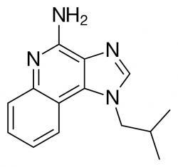 Imiquimod je komerční název pro 1-isobutyl-1H-imidazo, quinolin-4-amine. Sumární vzorec:C14H16N4. Je schváleným přípravkem na léčbu genitálních bradavic.