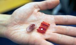 """""""Origami záchranář"""" ukrytý v kapsli a ve svém provozuschopném stavu. Kredit: Melanie Gonick / MIT"""
