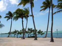 Na Floridě je mají hodně moře i hodně Slunce. Kredit: Ex1le / Wikimedia Commons.