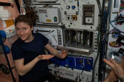 Niečo z pozemských radostí - takto sa na ISS pečie pizza. Kredit: NASA.
