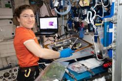 Astronautka Christina Koch pri botanickom výskume na ISS. Kredit: NASA.