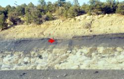 Slavná jílová vrstva K-T (nově K-Pg) v Coloradu, obohacená iridiem. Walter Alvarez se nejdřív domníval, že by mohlo jít o důkaz exploze blízké supernovy, tuto hypotézu ale brzy vyvrátily výsledky fyzikálně-chemického rozboru hraničních sedimentů. Kredit: Anky-man, Wikipedie (CC BY-SA 3.0)