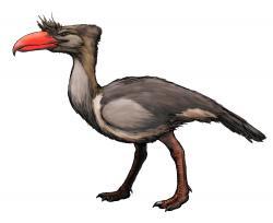 Rekonstrukce přibližného vzezření kelenkena, jednoho z největších známých dravých ptáků v dějinách života na Zemi. Přibližně před 15 miliony let představoval tento tři metry vysoký a čtvrt tuny vážící forusracid obávaného predátora na území současné Argentiny. S lebkou dlouhou téměř tři čtvrtě metru a s nohama schopnýma vyvinout rychlost až 50 km/h by byl i v dnešních ekosystémech nepochybně velmi nebezpečným zvířetem. Kredit: FunkMonk; Wikipedie (CC BY-SA 3.0)