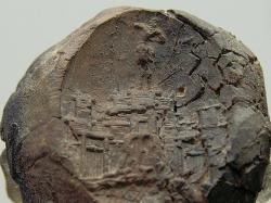 Otisk pozdně minojské pečeti. Kastelli, Chania, začátek post-palácového období, 1450-1400 před n. l. Archeologické museum v Chanii, KH 1563. Kredit: Zde, Wikimedia Commons