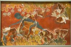 Mladík sbírá šafrán, středně velká freska z Knóssu, 1600-1450 před n. l. Je restaurovaná podle Evanse, který části modrého těla identifikoval jako chlapce. Vzadu nad ním je vidět ocas. Archeologické muzeum v Irakliu (Herakleion). Kredit: Zde, Wikimedia Commons.