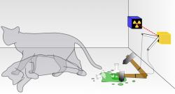 Nejslavnější experiment skočkou, při němž kočku nevyhazujete zokna. Kredit: Dhatfield / Wikimedia Commons.