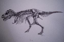 """Rekonstruovaná kostra """"Sue"""" (FMNH PR 2081), jednoho z největších a nejkompletnějších známých exemplářů druhu Tyrannosaurus rex. Fosilii objevila roku 1990 Susan Hendricksonová a o sedm let později byla po četných právních bitvách vydražena za víc než 8 milionů dolarů. Až do dražby """"Stana"""" to byl absolutní rekord z hlediska peněžního obnosu, zaplaceného za zkamenělinu. Vedle sumy, kterou anonymní kupec zaplatil nyní, je to však poměrně skromná částka. Která kostra asi bude vydražena příště a za kolik? Kredit: Vladimír Rimbala, z knihy autora Dinosauři od Pekelného potoka."""