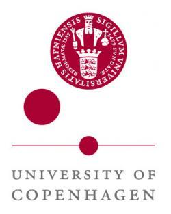 University of Copenhagen, logo.
