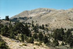 Kylléné z okolí vyhlídky nad Hermovou jeskyní. Kredit: Zde, Wikimedia Commons.