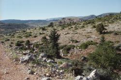 V okolí planiny Dasiou. V dálce Želví hory (Chelydoré). Kredit: Zde, Wikimedia Commons.