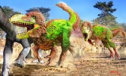 Dva jedinci labokánie na lovu dosud nepopsaného hadrosaurida, žijícího ve stejném ekosystému. Poklidná scenérie jednoho pozdně křídového odpoledne na území současného severozápadu Mexika. Kredit: Luis V. Rey