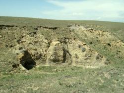 Sedimenty geologického souvrství Laramie v oblasti okresu Weld County v Coloradu. Mocnost vrstev má rozpětí 60 až 150 metrů a z velké části se jedná o pískovce a jílovce. Souvrství bylo definováno v roce 1876 a kromě fosilií dinosaurů zde byly objeveny také zkamenělé pozůstatky paryb, ryb, obojživelníků, nedinosauřích plazů (želv, ještěrů a krokodýlů) a také savců. Pestrost tehdejších ekosystémů dokládá také vysoká rozmanitost rostlinných druhů ve zdejším fosilním záznamu. Kredit: Anky-man; Wikipedie (volné dílo)