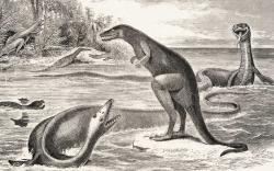 """Silně zastaralá rekonstrukce pozdně křídového New Jersey. Dryptosaurus na ostrůvku v popředí je doprovázen mořským plazem elasmosaurem a v pozadí kachnozobým hadrosaurem. Ilustrace z roku 1869 velmi dobře demonstruje, jak výrazně se změnily představy o podobě druhohorního světa a jeho obyvatel za posledních 150 let. Kredit: Cope, E.D. """"The fossil reptiles of New Jersey,"""" in: American Naturalist, vol. 3 (1869), str. 84-91. (volné dílo, převzato z Wikipedie)."""