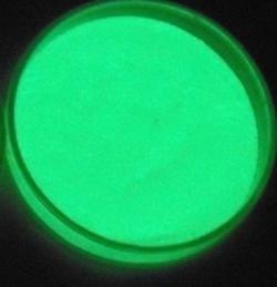 Své svítící rostliny druhé generace vylepšili vědci luminiforem z hlinitanu strontnatého potaženého oxidem křemičitým. (Kredit: Volné dílo).