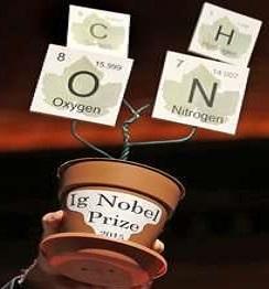 """Ig Nobel trofej, kterou Yang v roce 2015 obdržela. Je vyrobena z květináče a lístků, které se dají číst jako """"Cohn""""."""