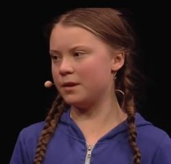 Přestane být Greta Thurnberg ikonou zelených aktivistů, nebo ji zlomí k obrazu svému? Video TED