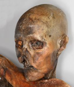 Pohled do tváře muže z pravěku (eneolitu, česky doby měděné). Žil v době, kdy v Tyrolských Alpách končila doba kamenná a z lovců se stávali chovatelé. Začali zvládat tavení mědi ale znalost výroby slitin a rozmach doby bronzové, je teprve čekal. Fotogalerie obrázků Ötziho ve vysokém rozlišení pro studijní účely poskytuje ICEMAN) http://www.icemanphotoscan.eu/