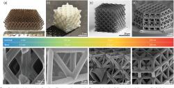 Nanomřížky jsou stále populárnější. Kredit: Bauer et al. (2017), Advanced materials.