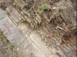 V době, kdy jsme si mysleli, že na Zemi existovaly jen bakterie asinice, v centrální oblasti severní Číny, kousek od Pekingu, už měli organismy mnohobuněčné a asi dvě pídě velké. (Kredit: Nanjing Institute of Geology and Palaeontology)