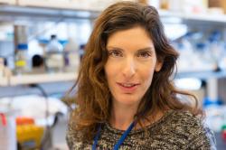 Neta Shlezinger, první autorka publikace, Memorial Sloan Kettering Cancer Center, New York.