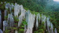 Nejde jen o horniny v Americe. I z vápencových skalních věží Gunung Mulu na Borneu jsou rázem klimatičtí zloduši zhoršující klima planety. Kredit: Paul White, Flickr (Creative Commons).