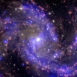Pozoruhodná galaxie NGC 6946. Kredit: NASA.