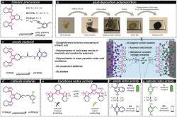 Organická baterie schinony. Kredit: Strietzel et al. (2020), Angewandte Chemie.