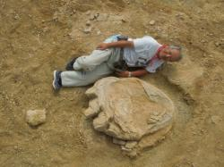 Profesor Shinobu Ishigaki v roli měřítka u jedné z dinosauřích stop. (Kredit: Shinobu Ishigaki, Okayama University of Science)