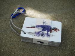 V těchto dnech autorovi článku vychází v nakladatelství Bylo nebylo soubor kartiček s obrázky Lucie Raškovové. Více informací o dílku vhodném pro děti školního věku zde