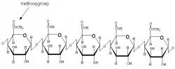 Podobně špatně jako karaya v testech propadl i pektin (lineární polysacharid kyseliny galakturonové).